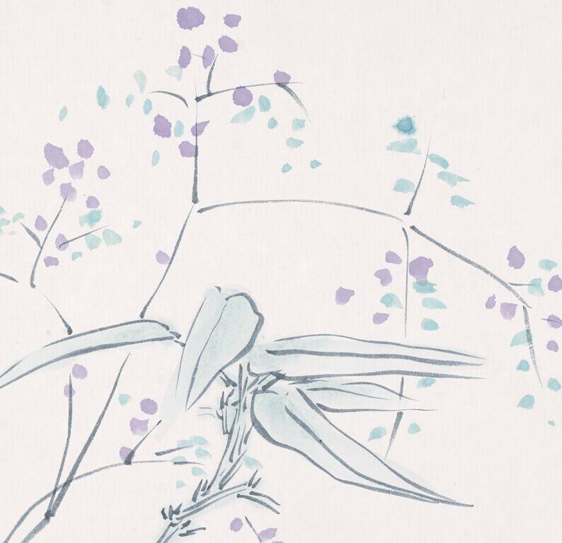 卉——《满天星》